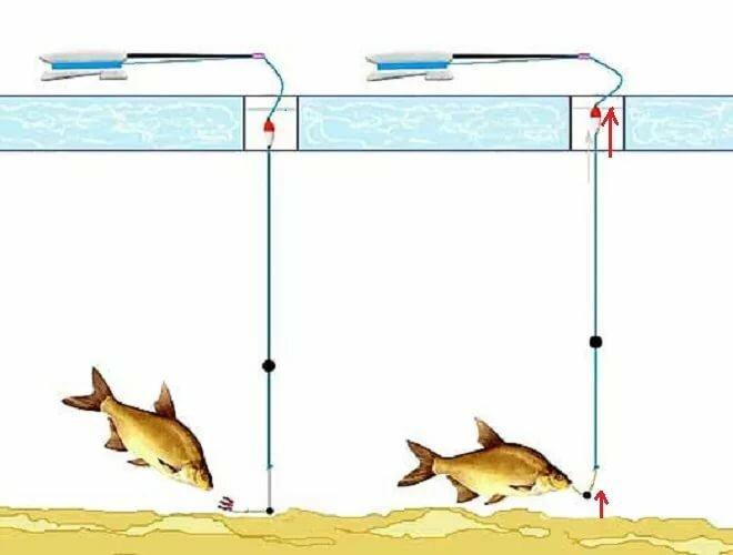 Как собрать и оснастить поплавочную удочку
