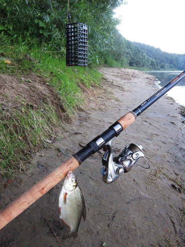 Ловля язя на спиннинг: лучшие приманки, техника ловли и поиск места