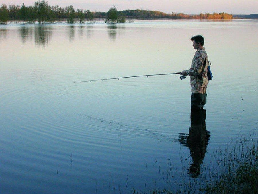 Прогноз клёва рыбы в городе брест