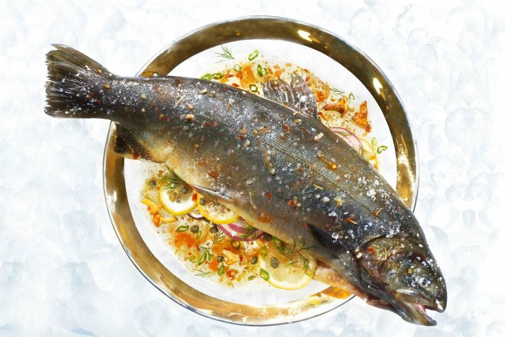 Рыба голец польза и вред, вкусные рецепты. как приготовить рыбу голец