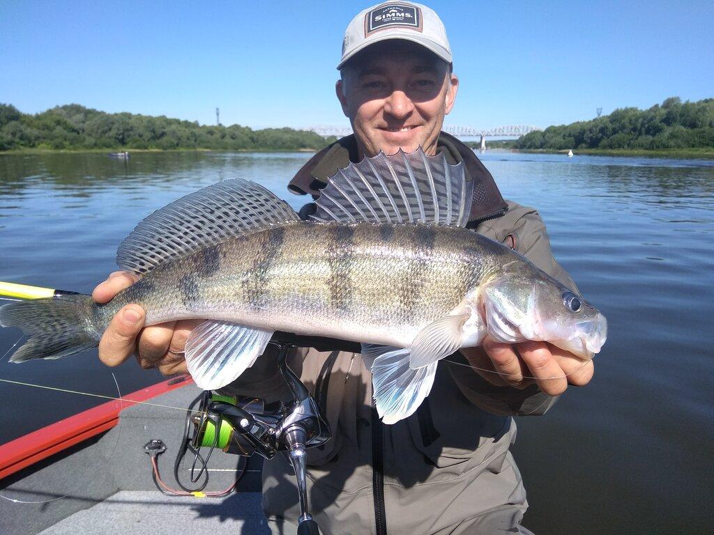Рыбалка на оке в районе серпухова