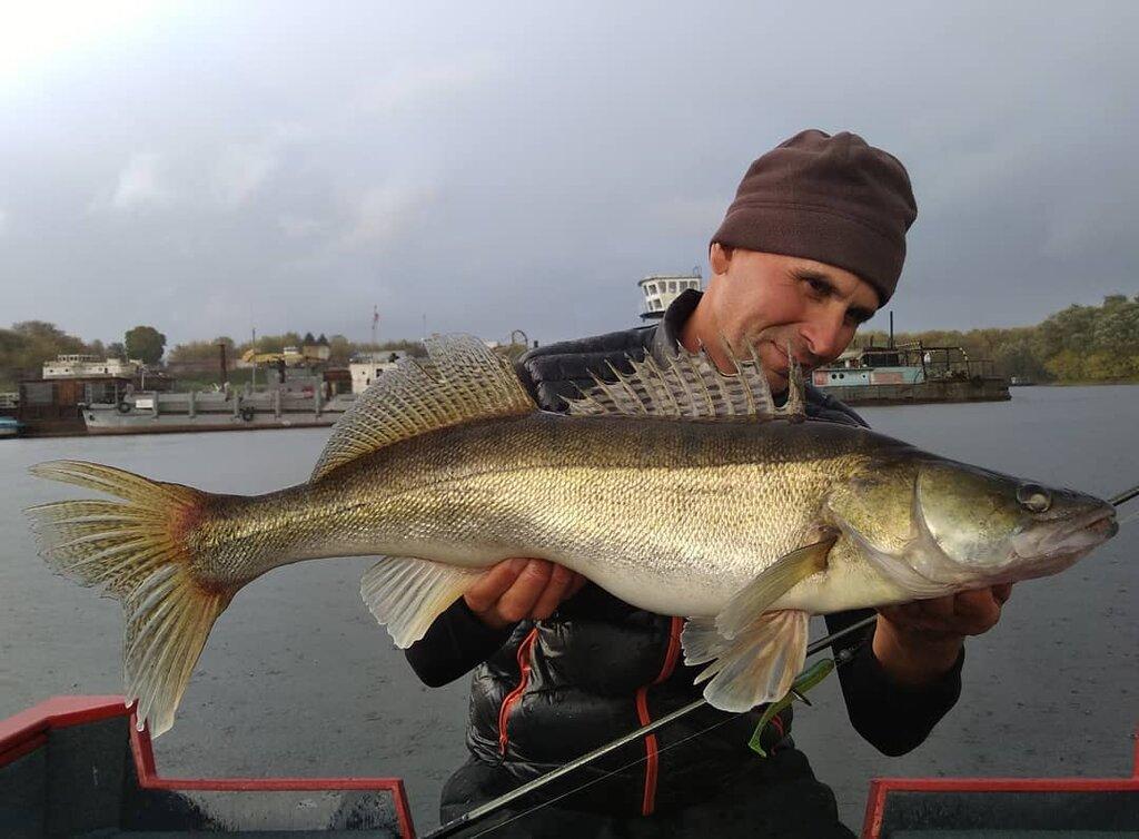Рыбалка на оке. перспективные места и эффективные снасти