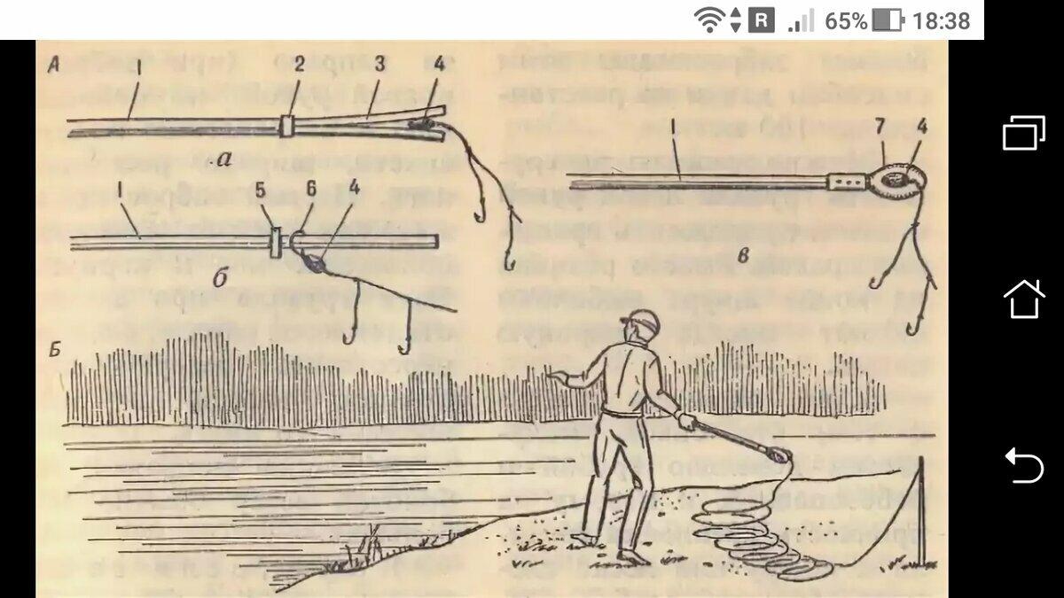 Техника ловли чехони