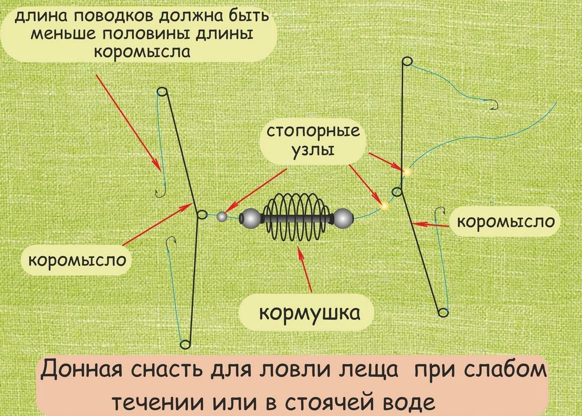 Как ловить леща на фидерную снасть
