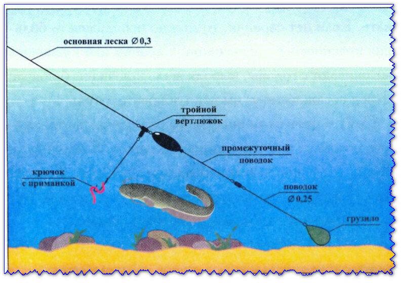 Как сделать донку на карася своими руками, особенности донной рыбалки