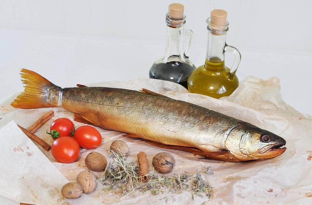 Рыба голец что приготовить. рыба голец польза и вред, вкусные рецепты